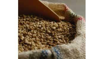 PRODUCCIÓN DE CAFÉ COLOMBIANO CRECE 3% EN LO CORRIDO DEL AÑO